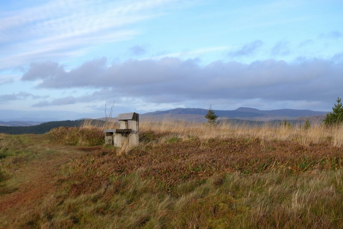 Above-the-Ystwyth-Forest