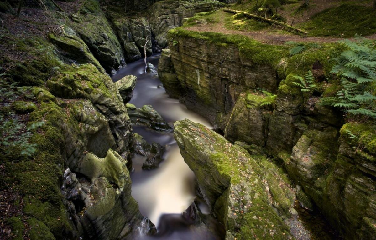 Afon-Ystwyth-Hafod-Estate