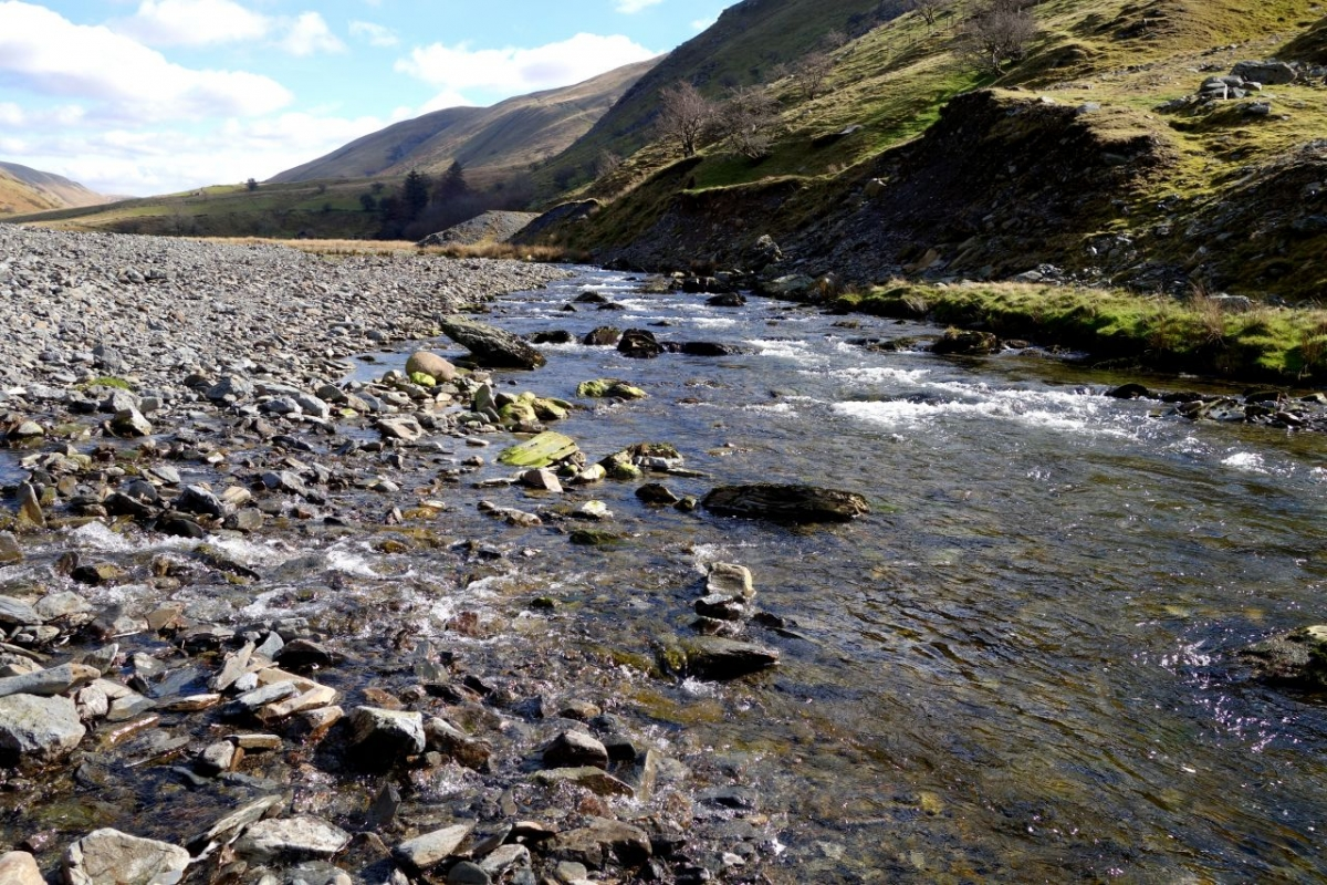 The Ystwyth River offers beauty and fun for all ages