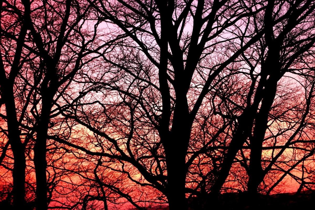 Sunset viewed from Ty Mari