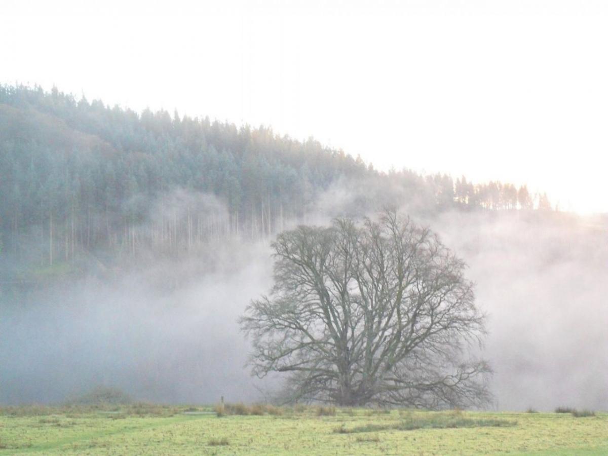 Mist rising in Cwmystwyth valley