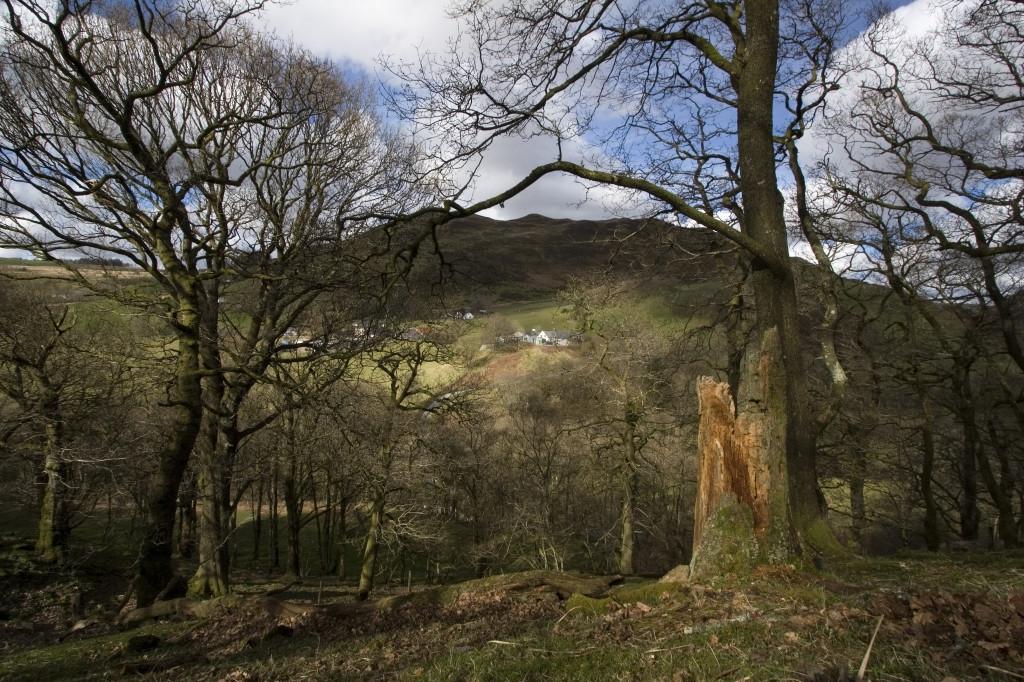Looking-across-to-Welsh-Hideaways