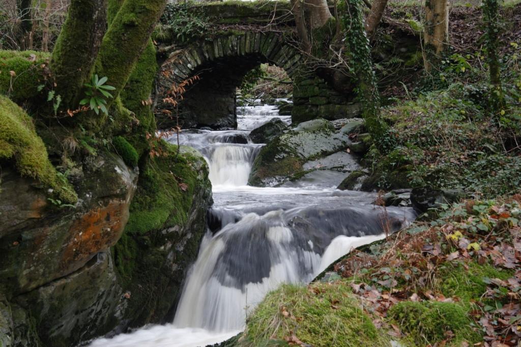 River-at-Hafod