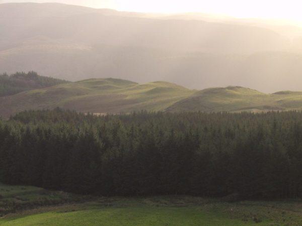 Cwmystwyth valley evening