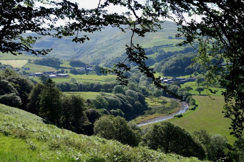 View to Penroc and Ty Mari holiday cottages