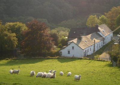 Ty Mari & Penroc holiday cottages at the far end