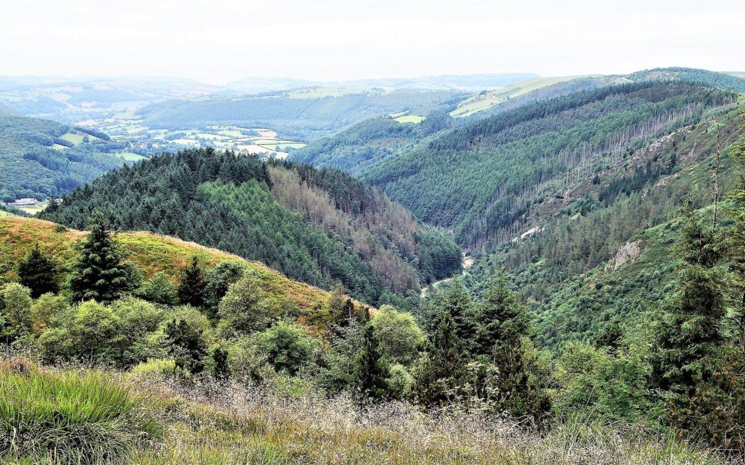 Visit Wales safely