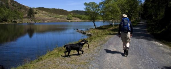 Walking around Capel Curig in the heart of the Snowdonia Mountain Range North wales